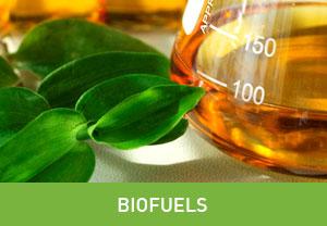 biofuel oil